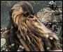Avatar Wookie-Tarfful