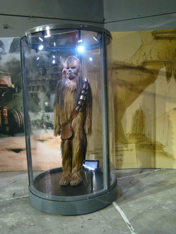 Photo 34 - Chewbacca